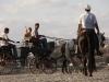 Kutsche fahren auf's Land